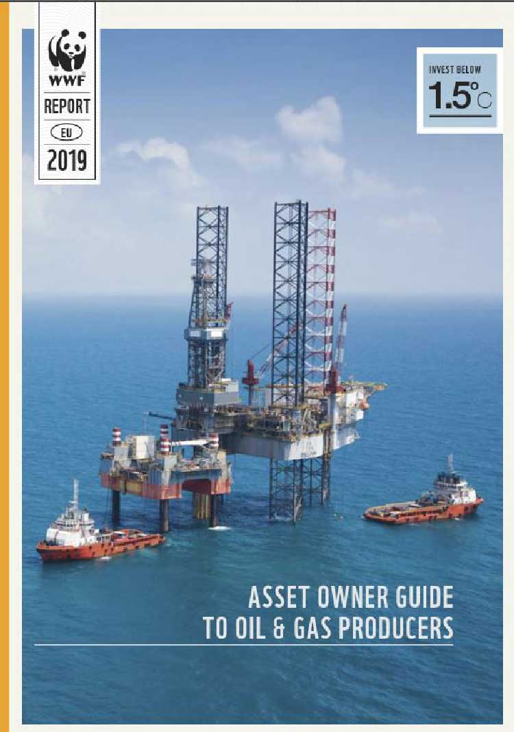 Asset owner guide to oil and gas producers