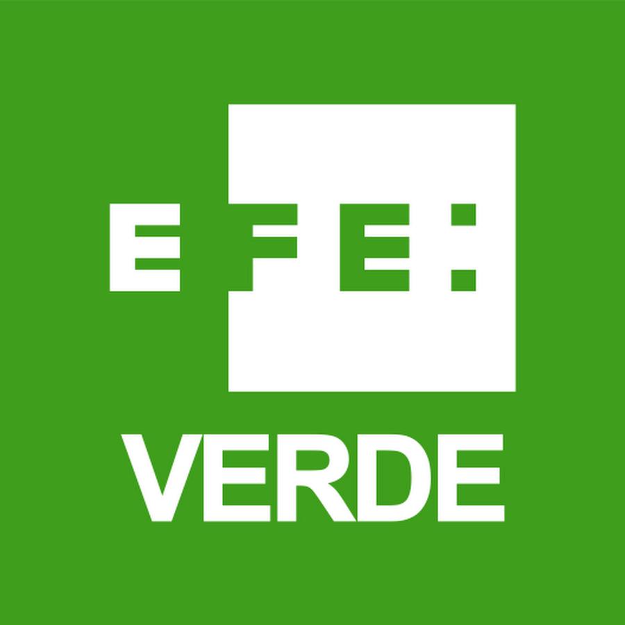 Resultado de imagen para logo EFE verde