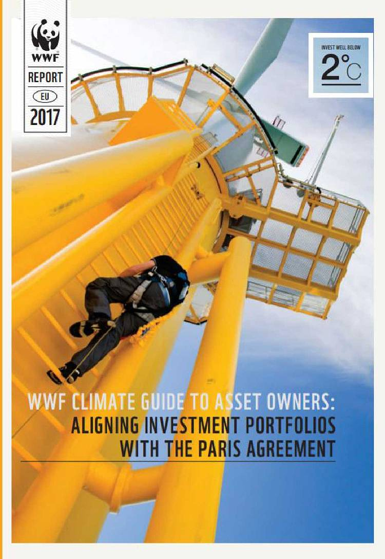 Topline recommendations WWF climate guide to asset owners: Aligning investment portfolios with The Paris Agreement