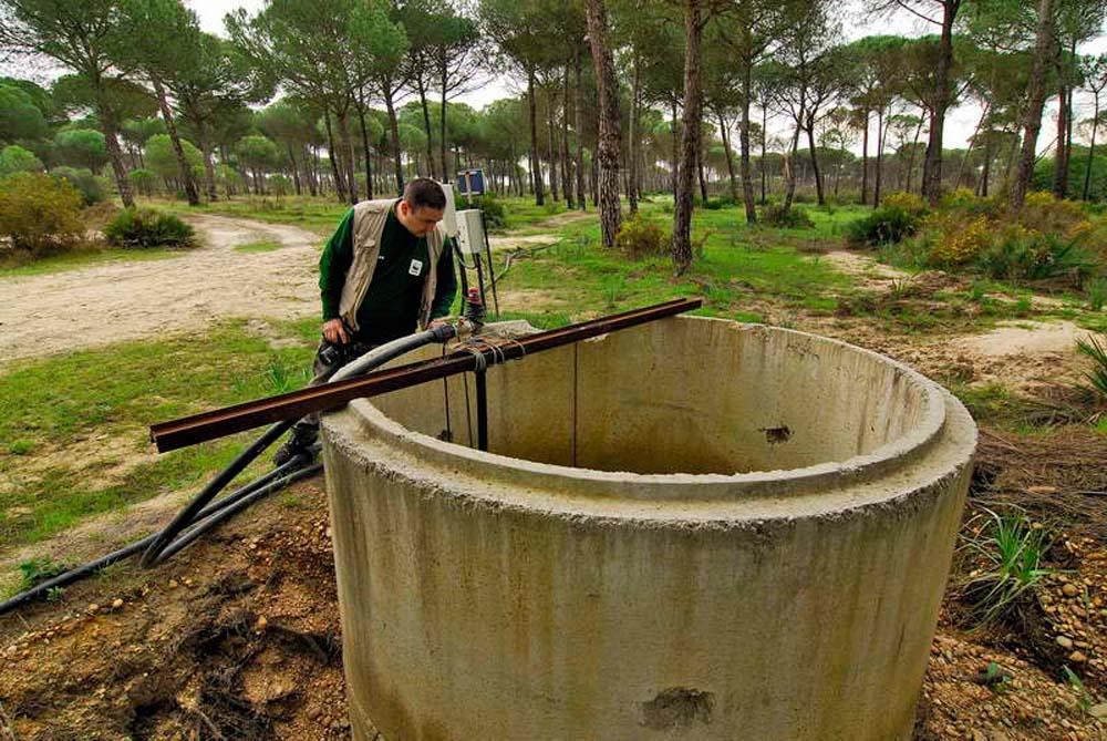 Pozo ilegal Doñana