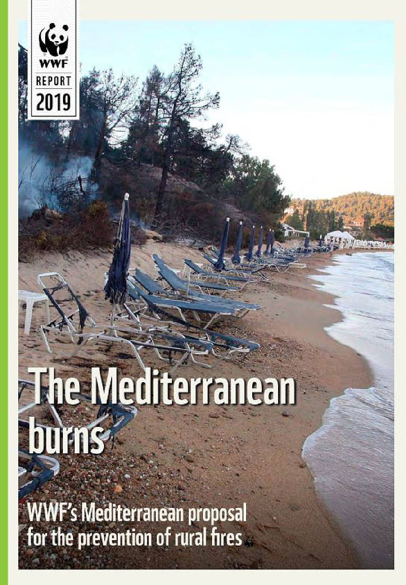 The Mediterranean Burns (Report rural fires)